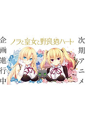 Nora to Oujo to Noraneko Heart (New Anime)